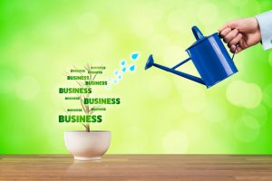 How To Grow My Business